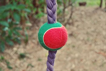 DIY Braid ball dog toy