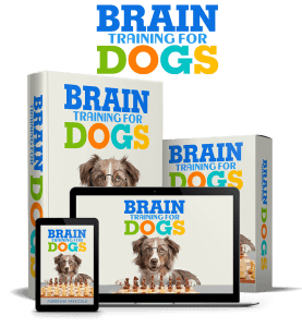 brain training for dogs package