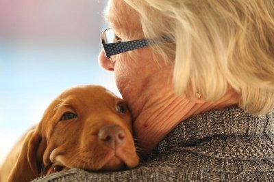 give dog a hug