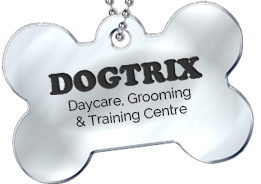 Dogtrix