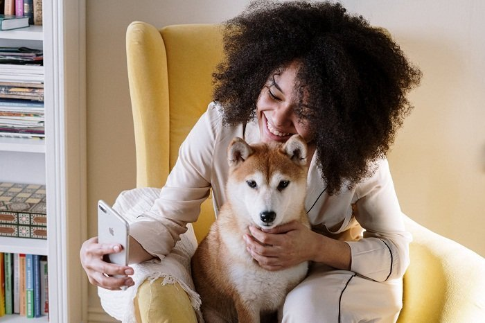Best Dog Breeds For First Time Owners In Apartments