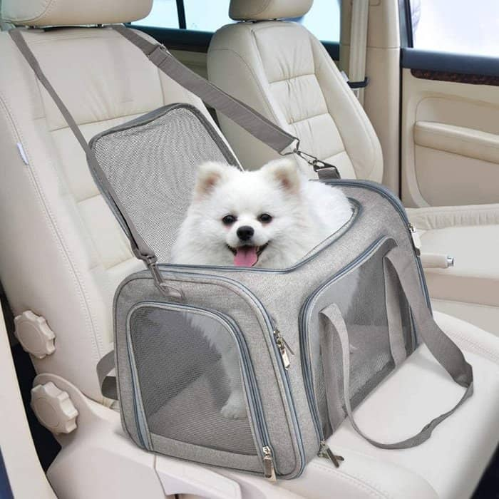 Best Airline Approved Pet Carriers for In-Cabin Flights