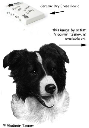 The Border Collie Shop Gifts And Collectibles