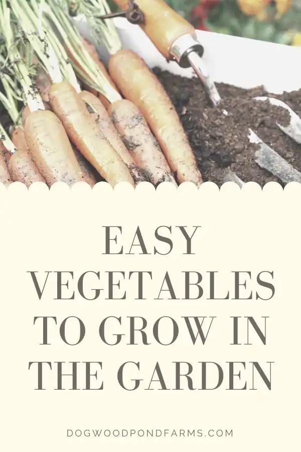 Grow Easy Vegetables