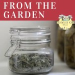 Preserve herbs from your garden for use all winter long.