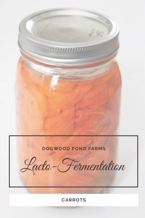 easy fermentation