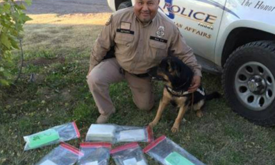 A male police officer and a dog kneel in the grass next to a police SUV and several plastic bags of evidence.