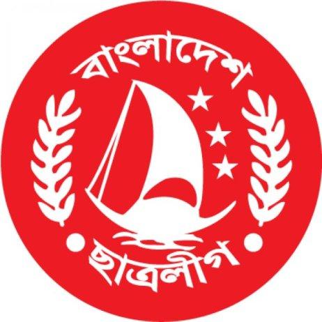 bsl_logo__flag