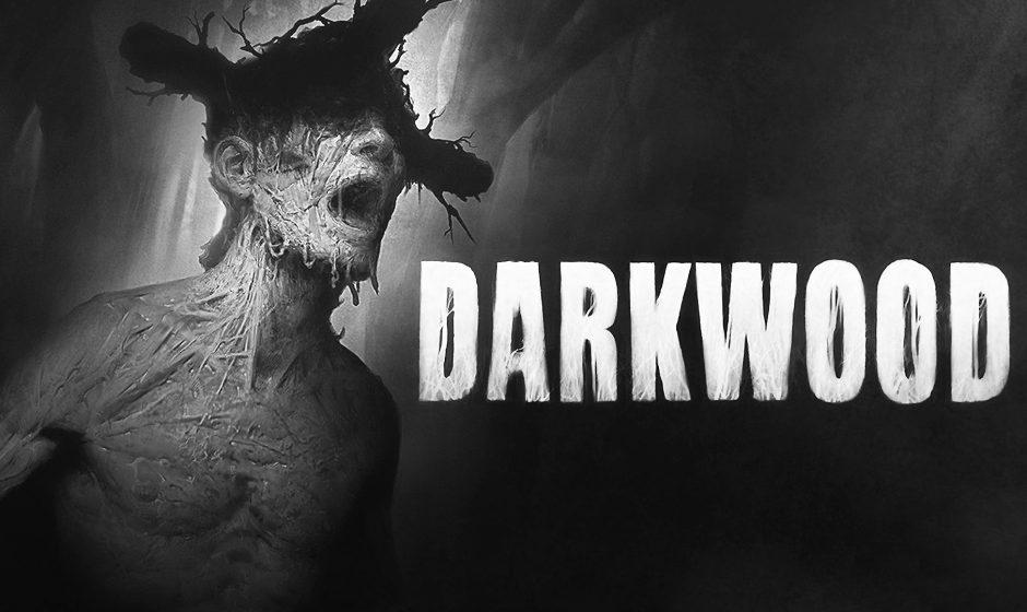 Darkwood arriva su Console!