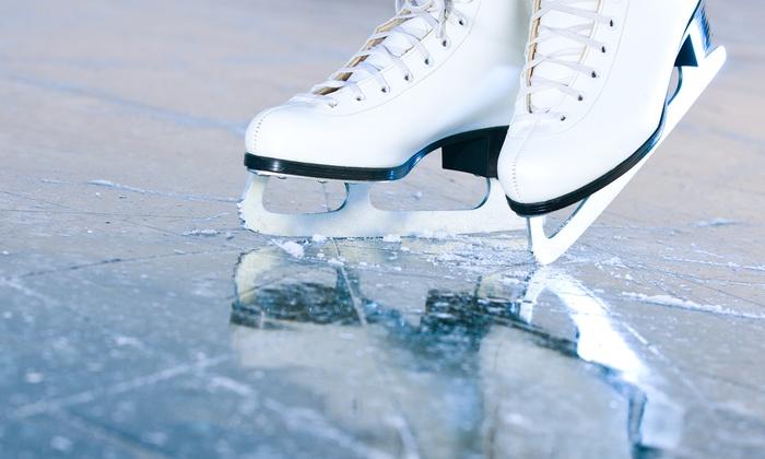 Cosplay on Ice ad Assago!