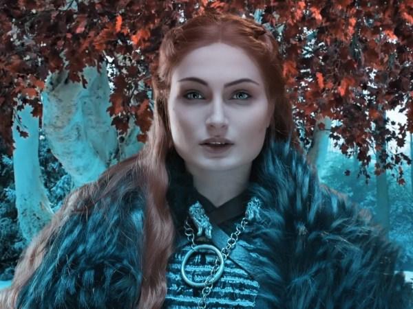 Sansa della casata Stark e Regina del Nord, è interpretata da Irene Tommasi!