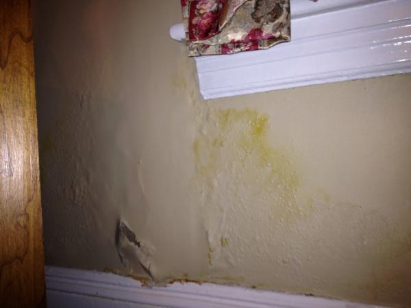 Plaster Wall Damage Under Window Community Forums