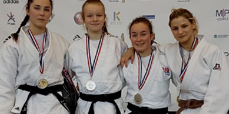 Harnes judo