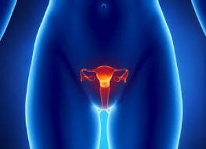 KANKER RAHIM :: Obat Alami Untuk Penyakit Kanker Rahim ...