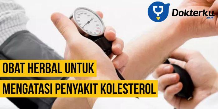 Obat Herbal Untuk Mengatasi Penyakit Kolesterol