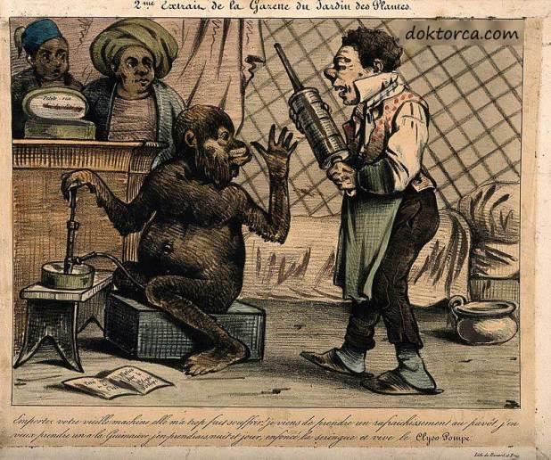 Hatmi ve afyonla doldurulmuş, yeni bir tasarım için eski tarz bir kederi reddeden bir maymunun 19. yüzyıl hicivli karikatürü kabızlık nedir ve nasıl tedavi edilir? Kabızlık Nedir ve nasıl tedavi edilir? tarihte kabizlik
