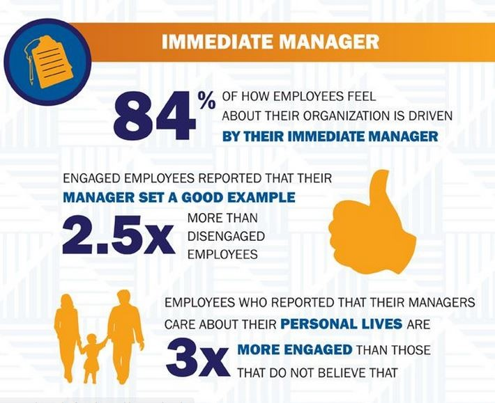 immediate manager - dokuzbescom