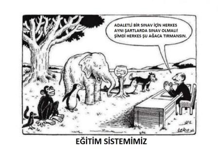 turk-egitim-sistemi