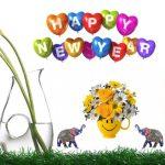 Happy New Year To all my reader नये वर्ष की शुभकामनाएं