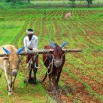 गाड़ीवान किसान की हनुमान भक्ति की कहानी Hindi Story of Farmer