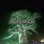 यह पेड़ मित्र था | Motivational Hindi Story on Environment