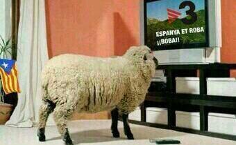 TV3 MUTANTE