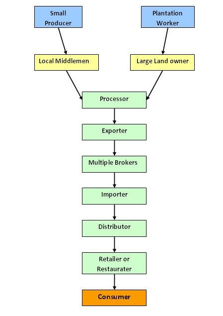Premium Coffee Market Segmentation - DolceraWiki