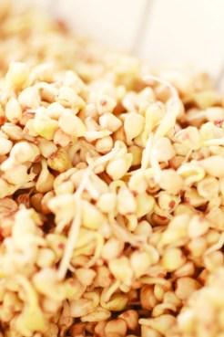 Porridge di Grano Saraceno RAW_Dolce Senza Zucchero (13)
