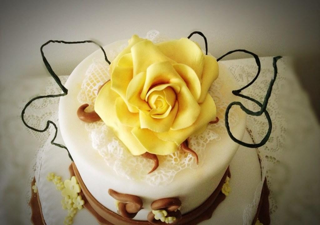 Una torta di compleanno speciale