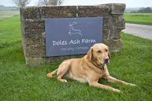 Doles Ash Farmhouse