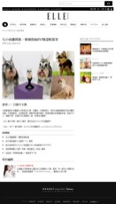 2016Y ELLE 寵物寶貝專欄報導 https://www.elle.com/tw/life/fluffy/g23891/7-ways-to-cope-with-pets-loss/?slide=3