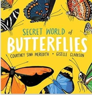 Secret World of Butterflies - cover image and web link