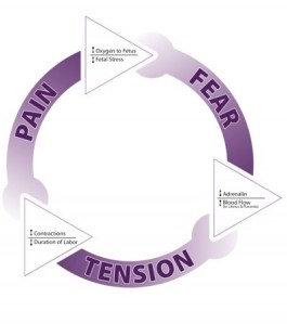 Fear Tension Pain cycle during childbirth