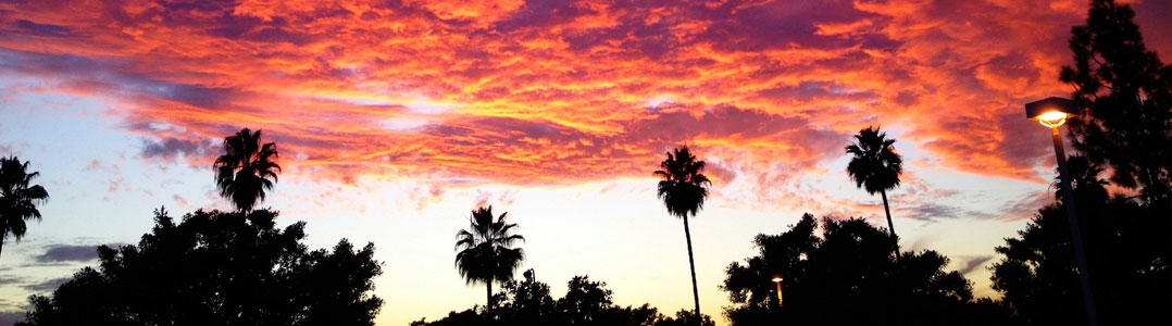 85 Hour Registered Prenatal Yoga Teacher Training, Tustin (Orange County), CA | August 20 – 30, 2015