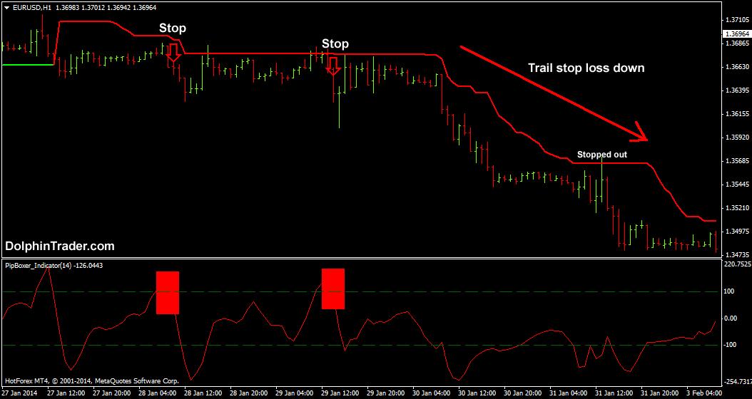 Forex trend following ea mudarabah investment account