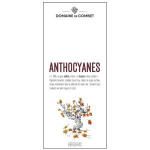 """BERGERAC ROUGE 2019 – Cuvée """"Anthocyanes"""""""