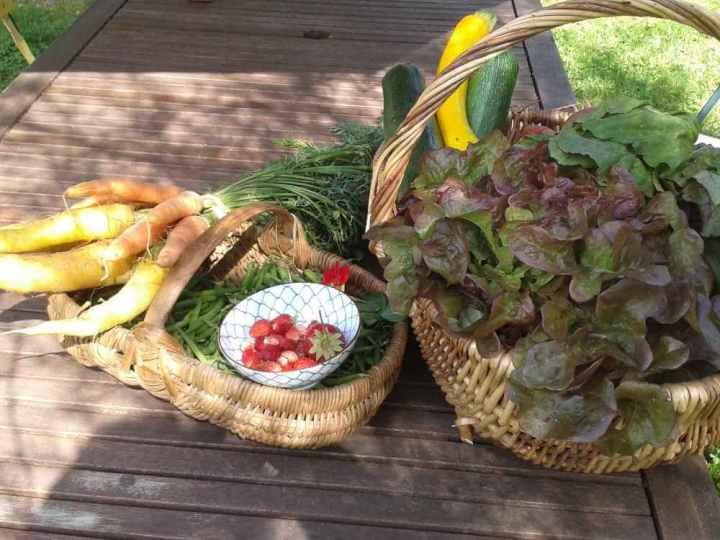 fruits et légumes de notre potager