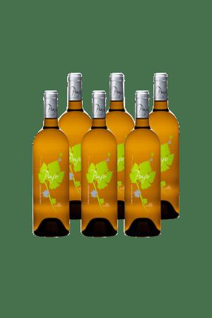 Vin blanc sec Pujo by Elle Côtes de Gascogne
