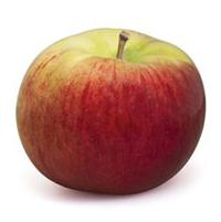 pomme cortland