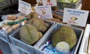 trh v China Town