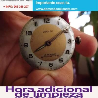 domestico-hora-adicional-impieza Servicios Domésticos