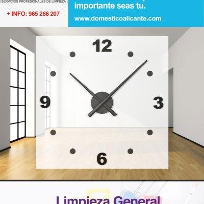 domestico-hora-adicional-limpieza-general Limpieza de Grafittis