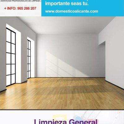 domestico-ofertas-limpieza-general Servicios Domésticos