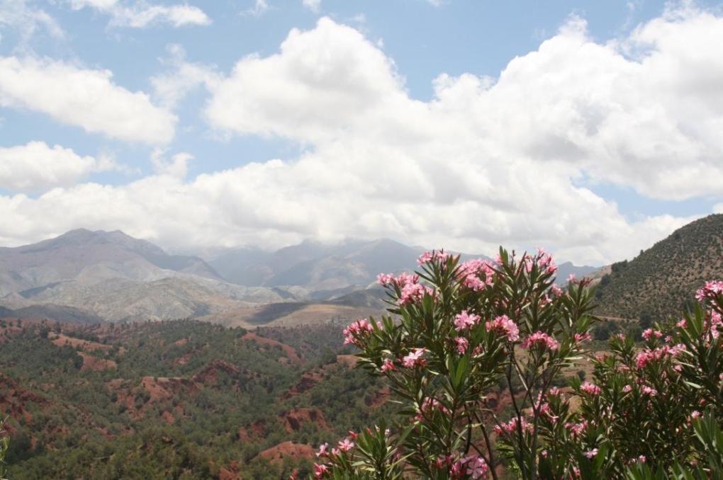 morocco atlas mountains road trip desert