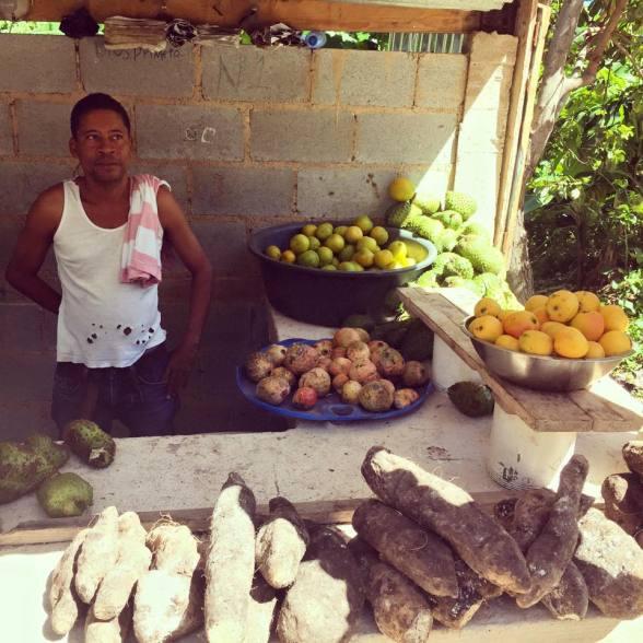 Road Trip Stop - Dominican Republic - Patatas, Yuka, Guayaba, Mangos