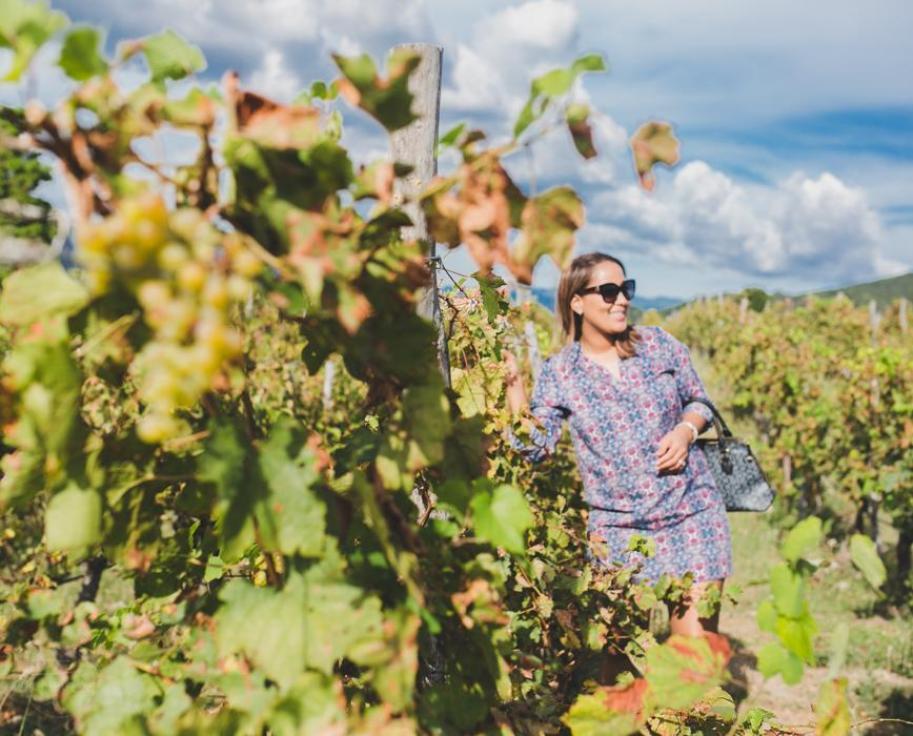 vineyard dominican republic