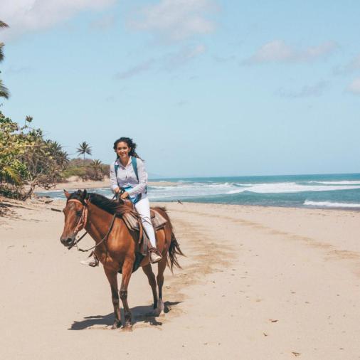 seahorse ranch horses