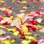 Eternal Wedding Planning