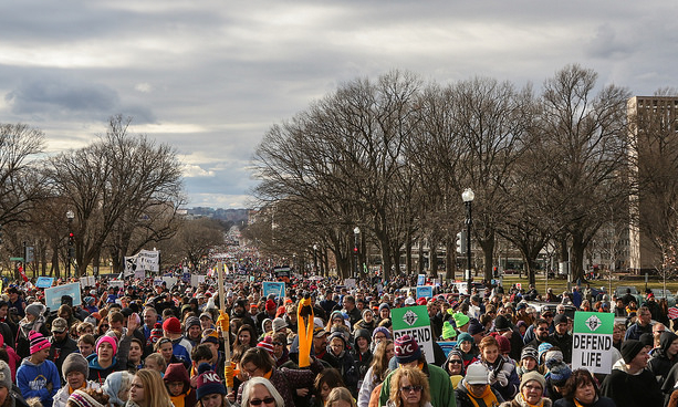 Fr. Lawrence Lew, O.P., March for Life: the Crowd (used with permission)