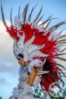 Dominican Carnival (in Puntacana)
